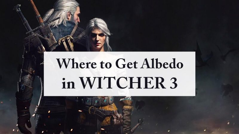 Where to Get Rebis, Nigredo and Albedo in Witcher 3 – Complete Guide