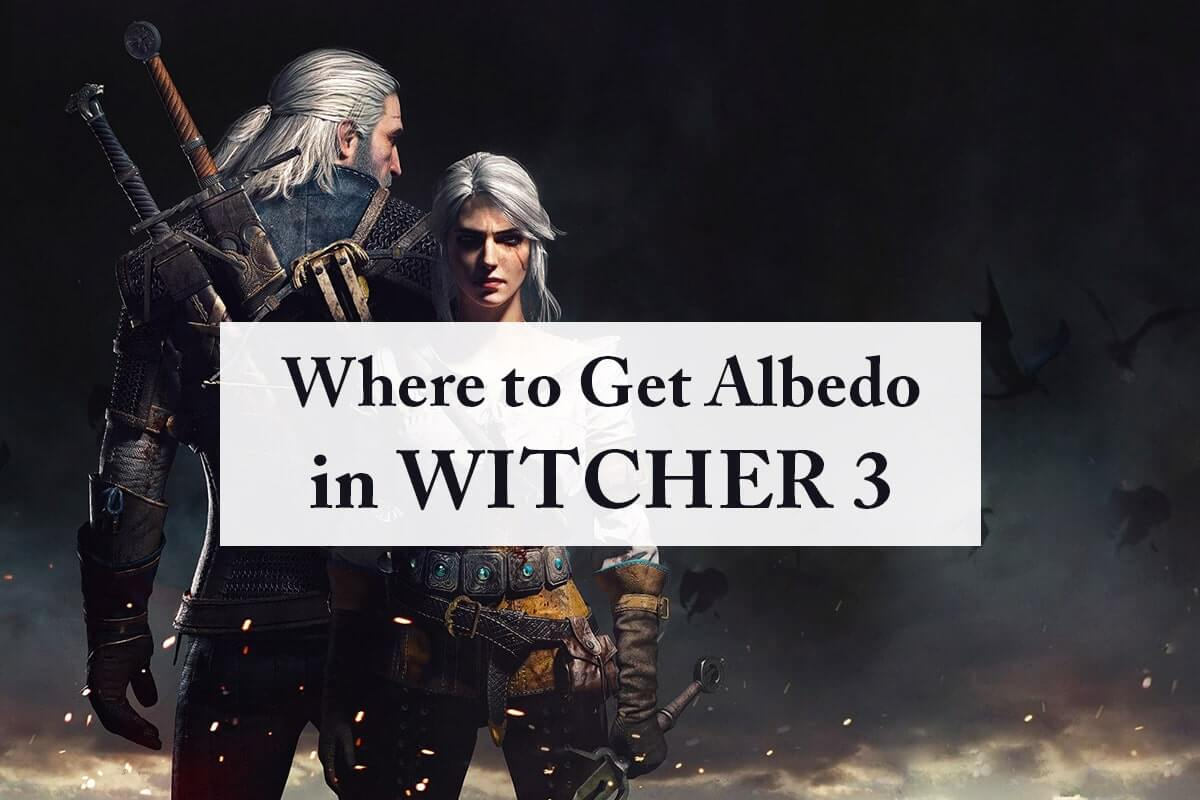 Where to Get Albedo in Witcher 3